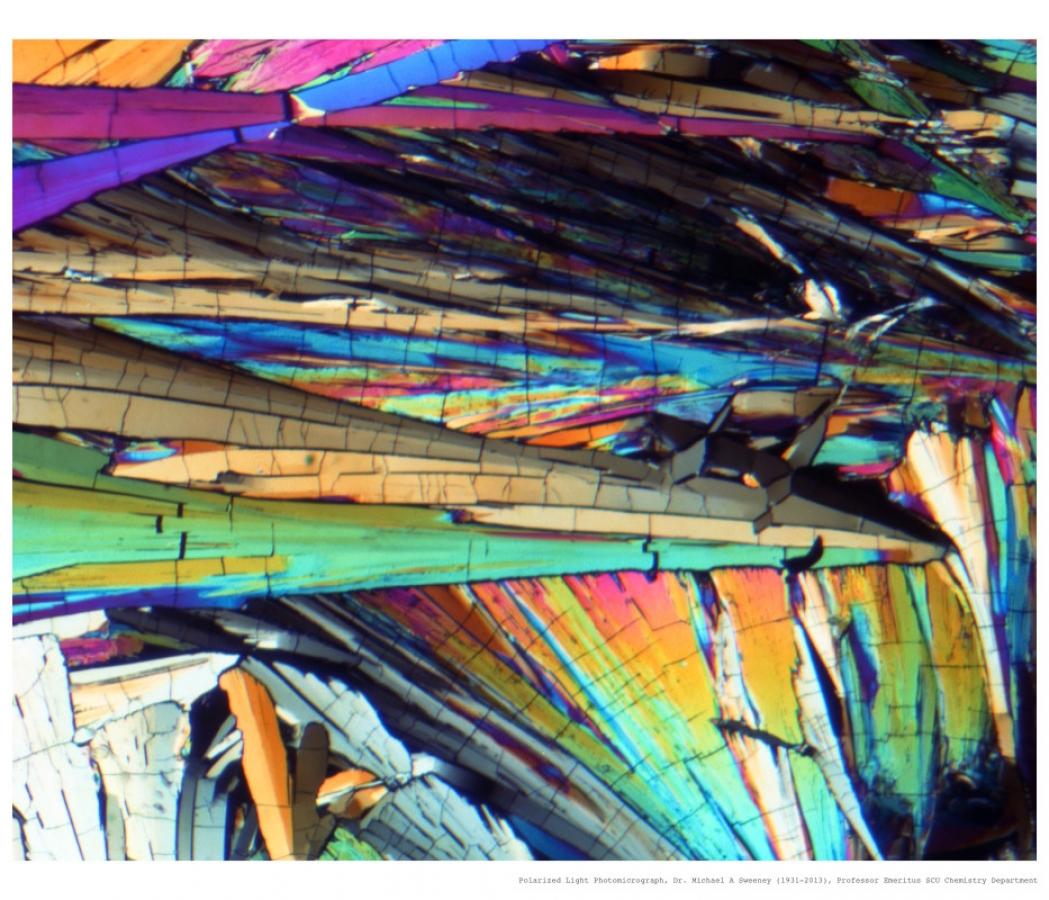 http://mudstonephoto.com/files/gimgs/th-26_mike_sweeney_photomicrographs-3_v2.jpg