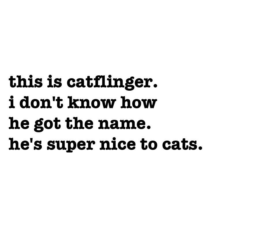 http://mudstonephoto.com/files/gimgs/th-22_catflinger-txt.jpg